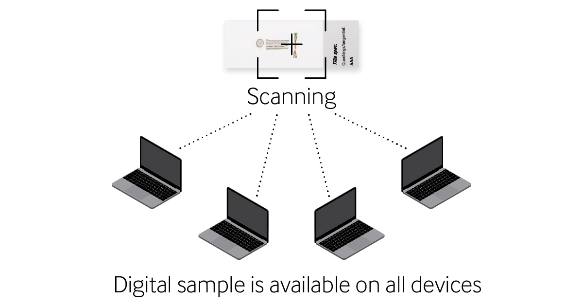Share digital sample devices