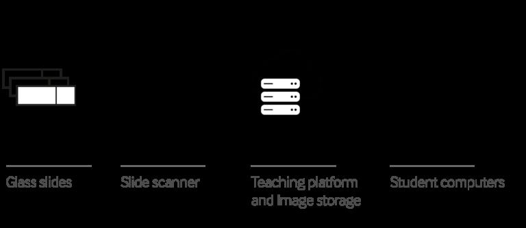 Mikroskopie Kurse Software Infrastruktur